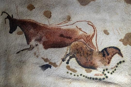 Lascaux Petroglyph detail
