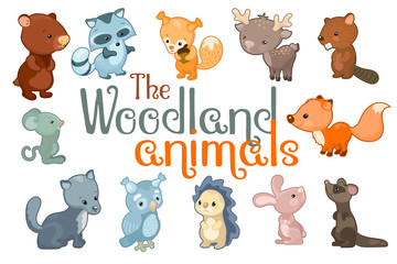 Cute woodland animals. Animal character set of vector illustrations on white background.