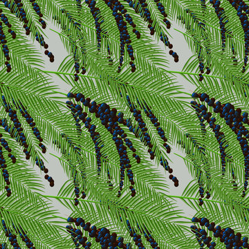 Floral Euterpe print Seamless pattern with acai berries and acai palm.