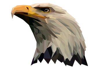 A proud eagle looks down. Bird's head.