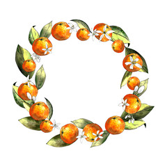 Mandarin wreath with leaves and flowers. Drawing markers