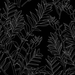 Beautiful exotic Zamioculcas Leaf Silhouette Seamless Pattern Background.  White lines on black background.