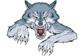 Gray Wolf suitable as logo for team mascot, Wild wolf drawing sketch, Wolf Mascot Graphic, vector graphic to design