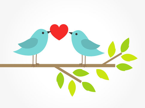 Couple of blue birds on tree branch with heart.