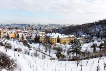 Snowy Prague City with St. Nicholas' Cathedral from Hill Petrin in the sunny Day, Czech republic