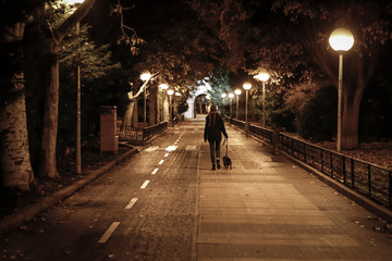 young pretty girl walking the dog at night in winter Fotomurales