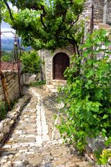 Street with grape vine in Berat, Albania.