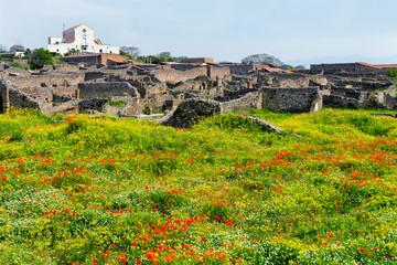 Beautiful Pompeii Landscape