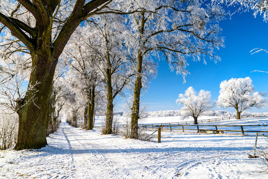 Landschaft in Masuren im Winter