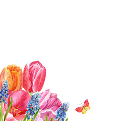 Floral background. Hand drawn watercolor tulips and muscari. Can be used for invitations, cards, weddings, mothers day, valentines day, birthday, and more
