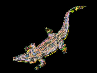 Abstract crocodile on black background.