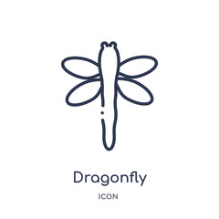 dragonfly icon from season outline collection. Thin line dragonfly icon isolated on white background.