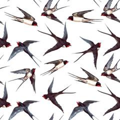 Watercolor swallow pattern