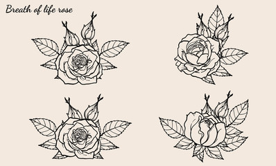 Rose ornament vector set by hand drawing.Beautiful flower on brown background.Rose art highly detailed in line art style.Breath of life rose for wallpaper or tattoo.