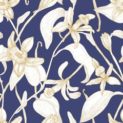 Elegant seamless pattern with blooming vanilla flowers hand drawn with contour lines on blue background. Floral backdrop with blossom of exotic plant. Botanical vector illustration for textile print.