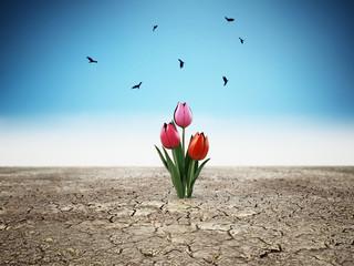 Lonely flower standing on cracked soil. 3D illustration