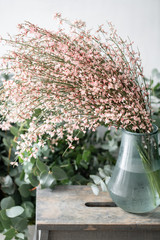 Bouquet in a glass vase of light pink genista cytisus flowers. Pastel color. Spring flowering plant branches. flower shop