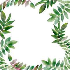 Tropical climbing plants. Watercolor openwork frame, vine branches isolated on white background. Hand painted green leaves, branches for beautiful design with space for text.