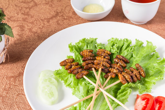 Insect foods set