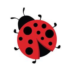 Cartoon ladybug icon, logo design, bright sticker, scrapbooking element, image for kids