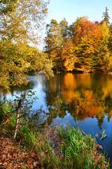 Fototapeta Piękny jesienny krajobraz, jezioro obraz
