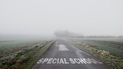 Sign 402 - SPECIAL SCHOOL