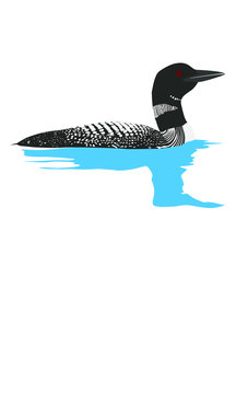 Famous Adirondack Loon on the Lake with a Reflection on the Water