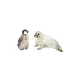Watercolor illustration of a sea seal and a penguin- funny animals