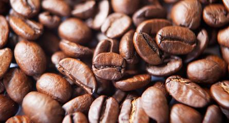 Foto op Canvas koffiebar grain de café en gros plan