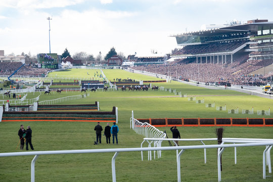 Cheltenham Races National Hunt at Cheltenham Racecourse