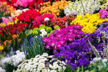 a lot of Flowers in flower shop at Kuromon Ichiba Market (fish market), Osaka, Japan.
