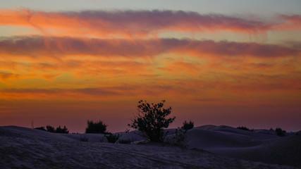 Colorful sunset in Dubai Desert