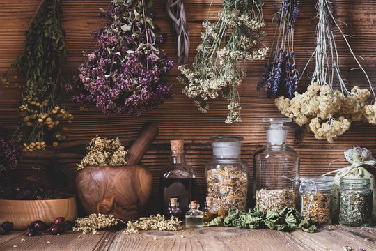 Dried herbs hanging over bottles of tinctures and oils