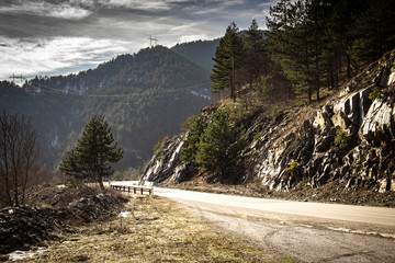 Asphalt mountain road at sunset with beautiful nature, stones and conifers. Mountain Tara in Serbia.