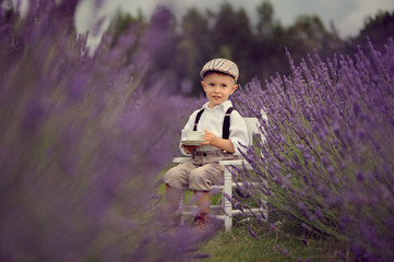A small four year-old smiling boy  on a lavender field at sunny summer day