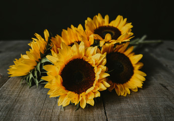 Close-up of fresh sunflowers on wooden table against black background