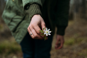 Midsection of woman holding flower while standing in forest