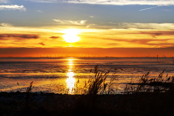 goldener Sonnenuntergang an der Nordseeküste bei Bremerhaven