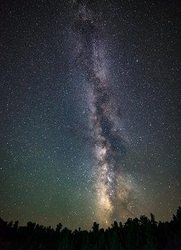 Vertical Portrait of an Erect Milky Way