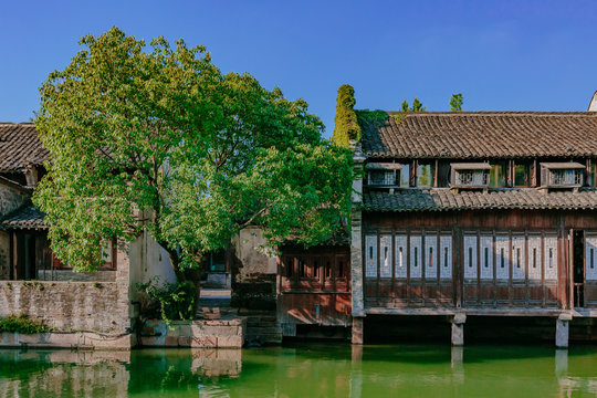 Traditional Chinese houses and trees by water, in the old town of Wuzhen, China