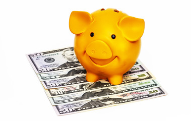 Piggy bank with banknotes