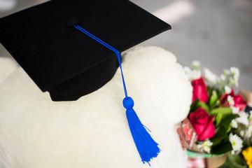 Background of graduate university student