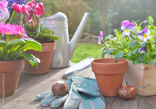 Spring Flowers Potted And Gardening Accessories Stockfotos Und