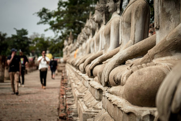 lot of stone beautiful image buddha in temple asian history in Ayutthaya, Thailand