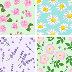 Set of seamless floral patterns. Chamomile, rose, lavender, wild rose flowers. Vector illustration of fragrant flowers and green leaves in a simple cartoon flat style.