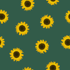 Seamless pattern yellow Sunflower on green, vector eps 10