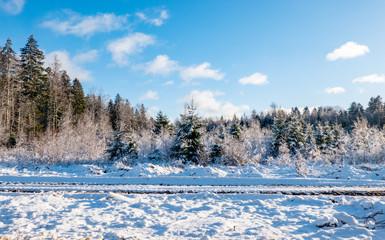 winter landscape in estonia