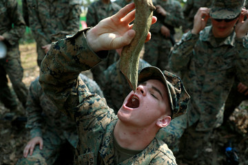 A soldier drinks water from a plant during the Cobra Gold multilateral military exercise in Chanthaburi