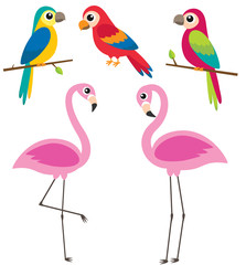 Cute cartoon parrots and flamingos
