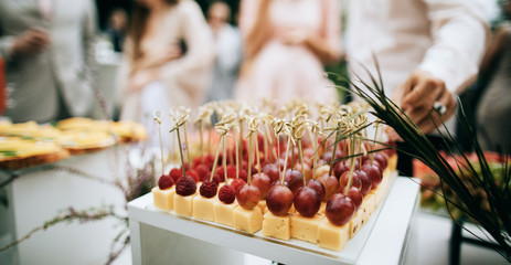 Beautifully decorated catering banquet table with Appetizers on outdoor